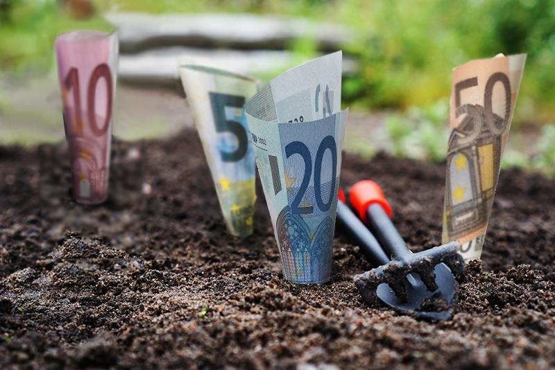 """Euro arrotolati e """"piantati"""" nella terra."""